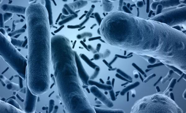 Granule lisované za studena Yoggies aprobiotika