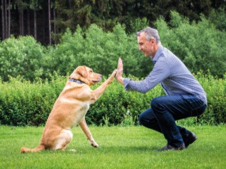 Kvalitní české granule lisované za studena a krmiva pro psy a kočky bez chemie