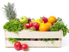 Může být pes vegeterián?