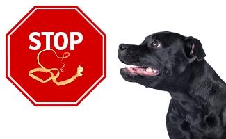 Stop parazitům